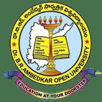 br ambedkar university logo